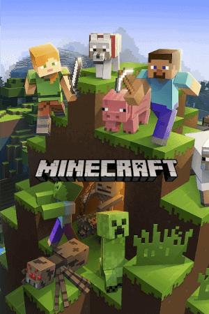Minecraft Sunucu Barındırma